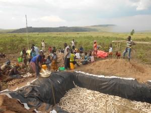 Bac de rouissage du manioc